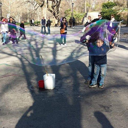Diario de NY - Central Park