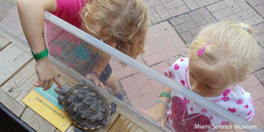 Miami-com-criancas-nmagazine_6