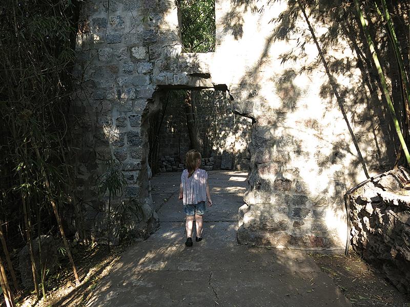 tosco-pai-rosario-argentina-internaspost-03
